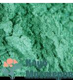Перламутровый пигмент Зеленое яблоко