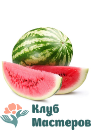 Ароматизатор пищевой Арбуз