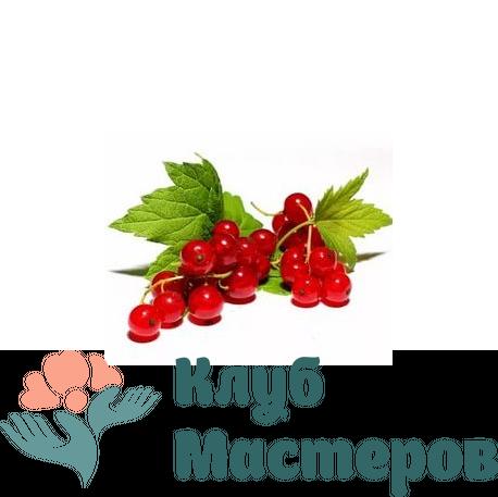 Ароматизатор пищевой Красная смородина